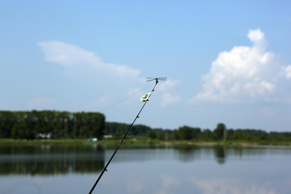 цена за рыбалку в панфилово