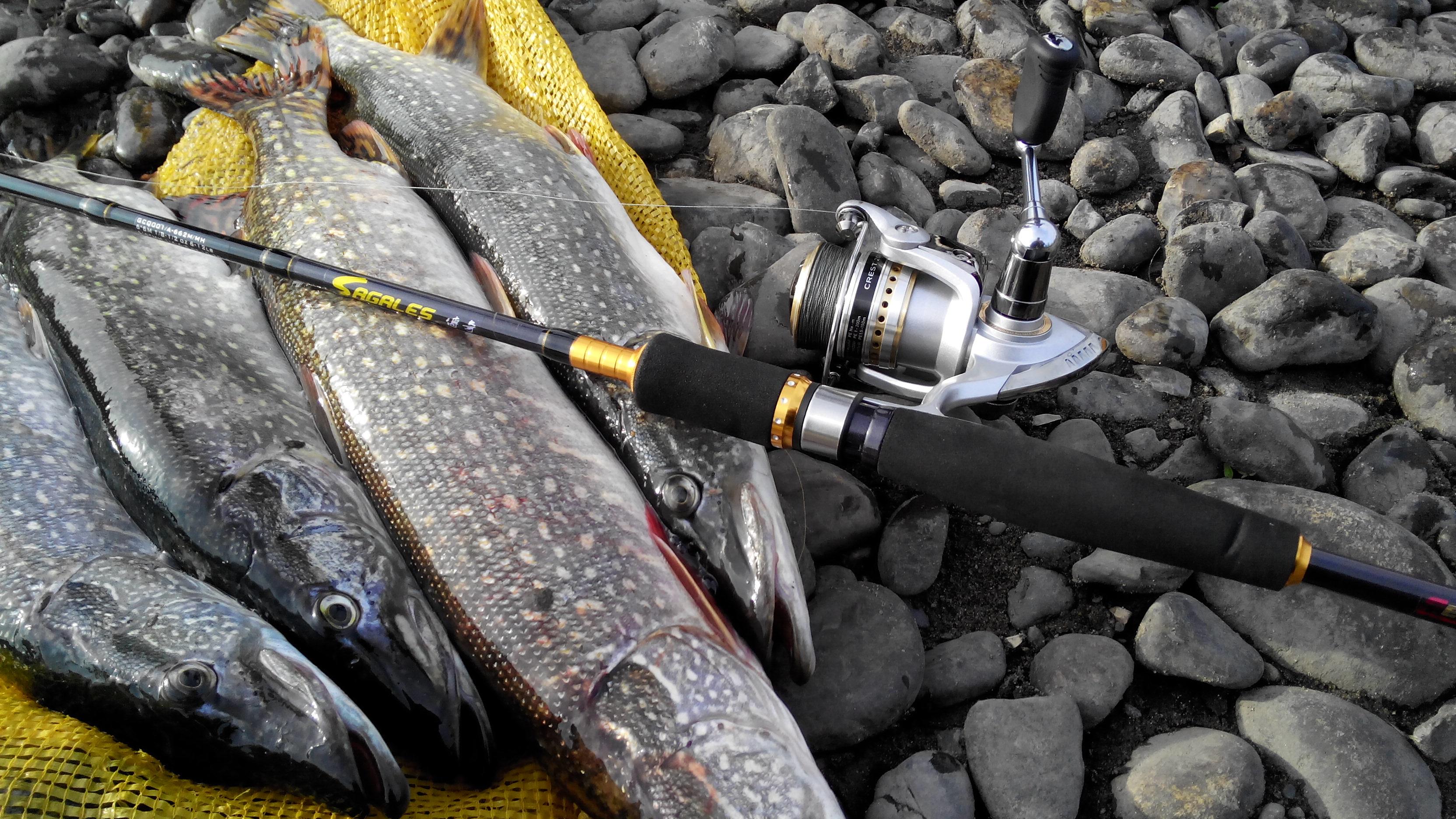 обои рыболова