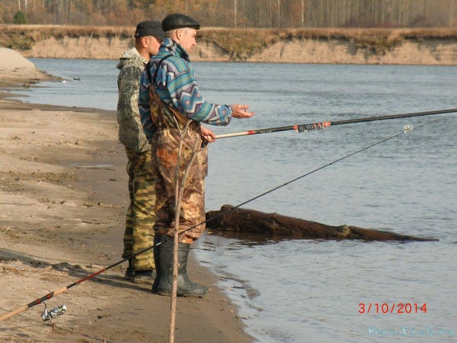 все о рыбалке в томске