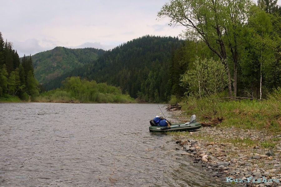 Рыбалка река кия красноярский край