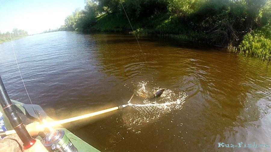 Рыболовно-охотничьи базы