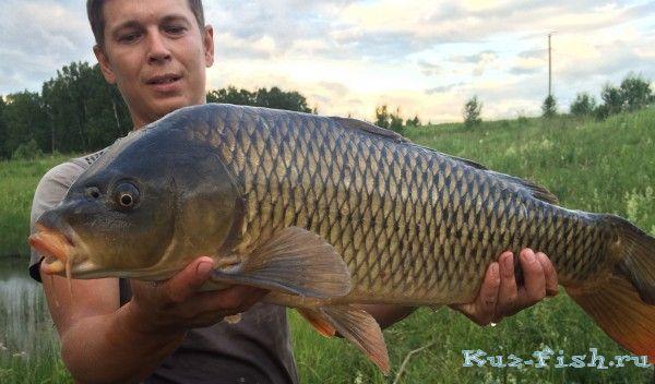 Рыбалка видео упа 2016