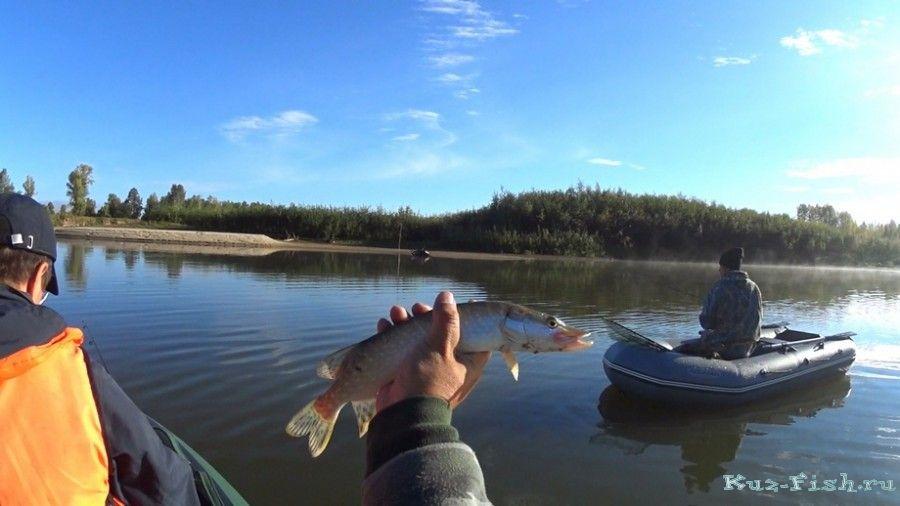 рыбалка в 2016 году в томской области