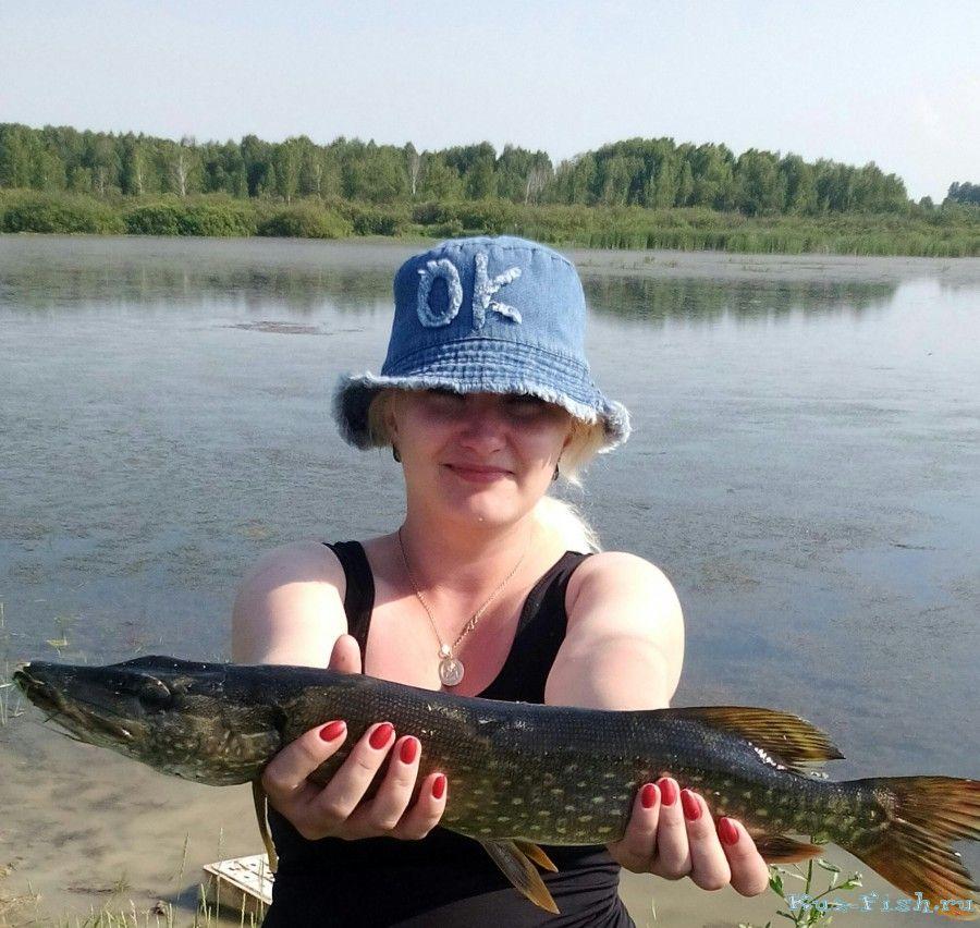 рыбалка в вологодской области видео летом