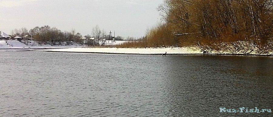 Рыбалка на беловском теплом канале