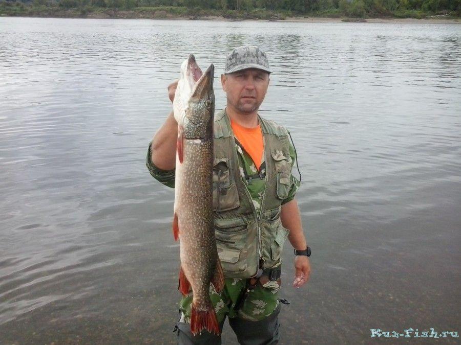 рыбалка в мае на реке томь