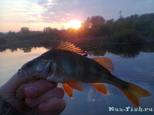 рыбалка на карьере в ильском