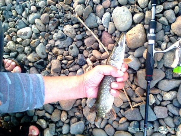 Молитва о успехе на рыбалке