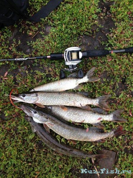 В Крапивинском районе в Северной Уньге утонул рыбак