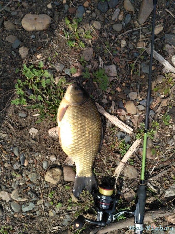 рыбалка в кемеровской области отчеты о рыбалке