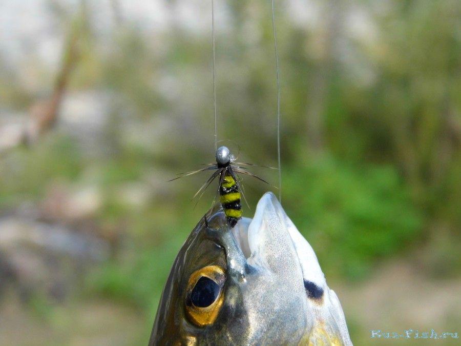 рыбалка на тирольку в красноярске
