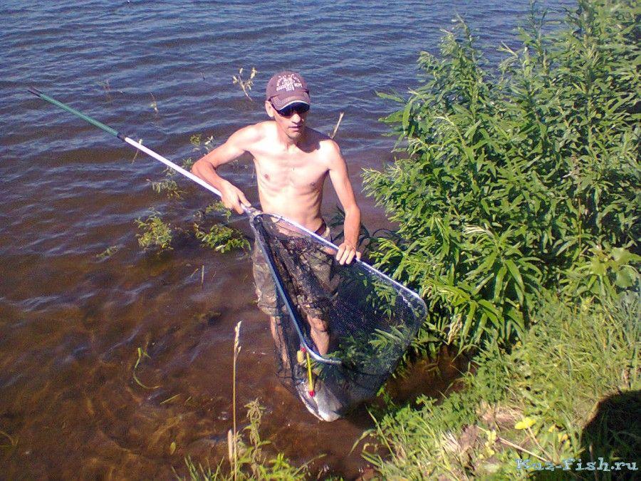 ловля толстолобика в июле