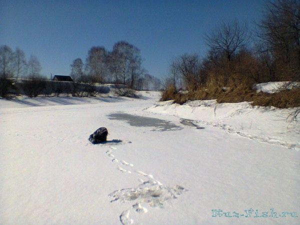 рыбалка в кемеровской области белово