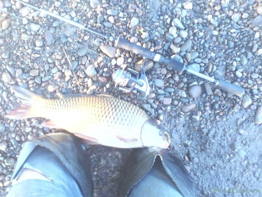 рыбалка на крьере