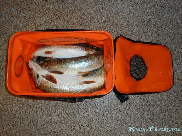 купить недорогой авто для рыбалки