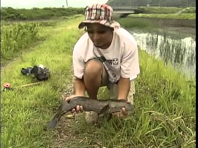 запрет на рыбную ловлю в хакасии