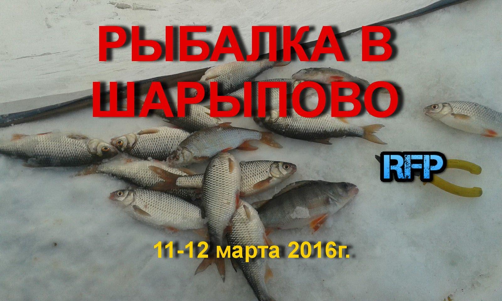 рыбалка в конце декабря на красноярском море
