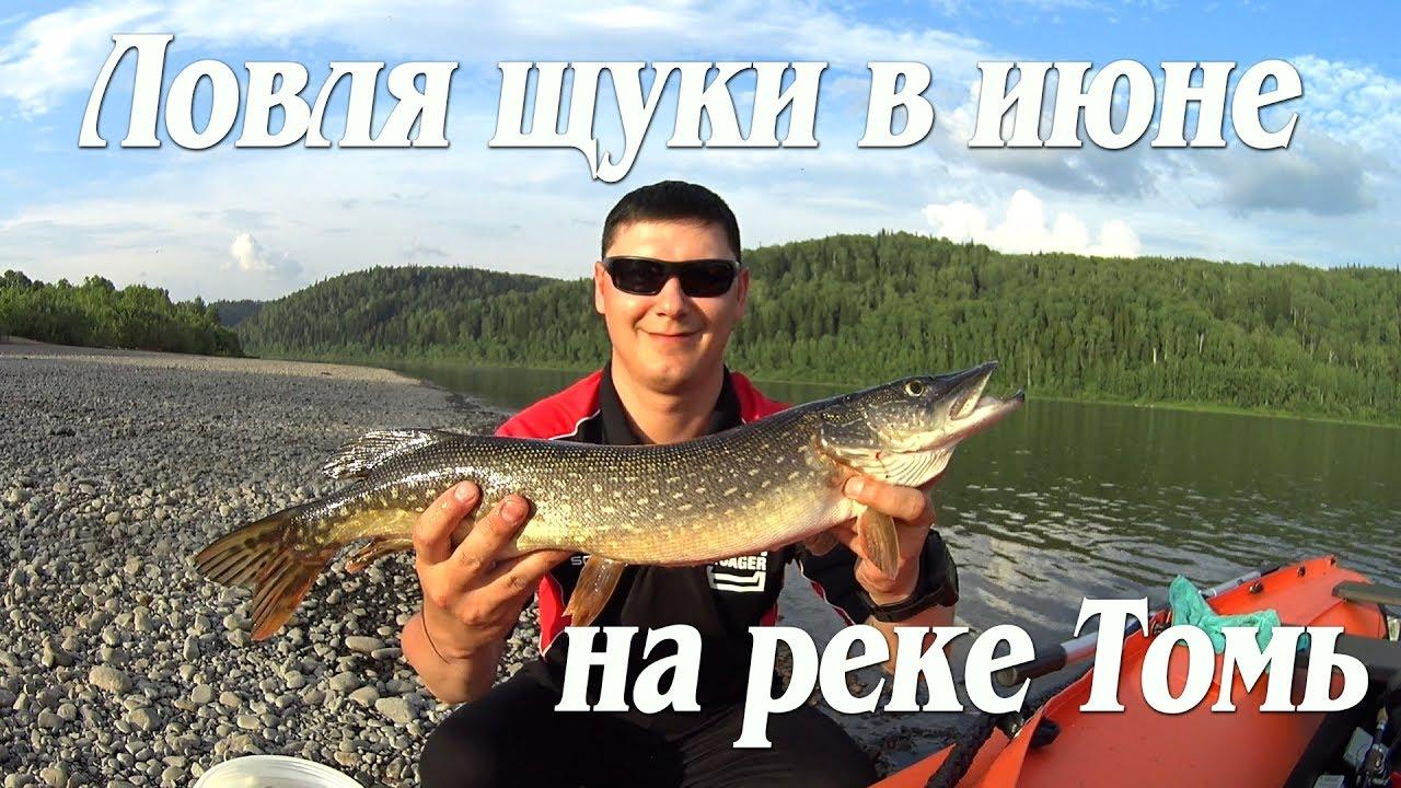 рыбалка на томи реке томь